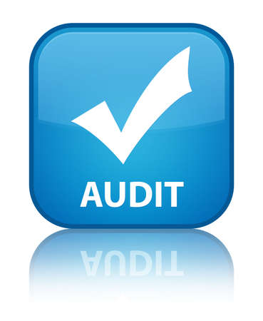 Audit (validate icon) cyan blue square button photo