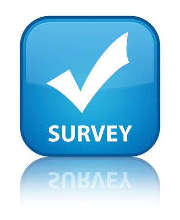Survey (validate icon) cyan blue square button photo