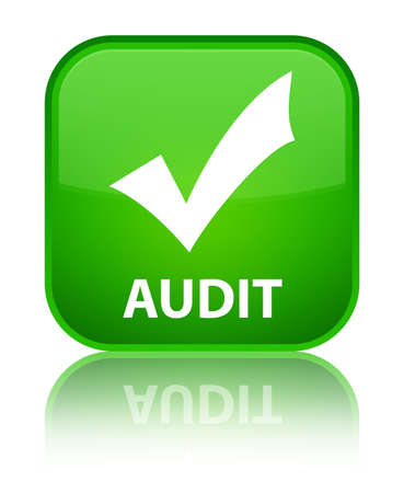 validate: Audit (validate icon) green square button Stock Photo
