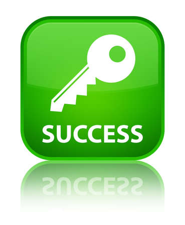 success key: Success (key icon) green square button