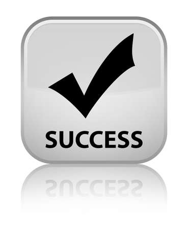 validate: Success (validate icon) white square button Stock Photo