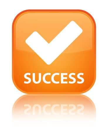 validate: Success (validate icon) orange square button
