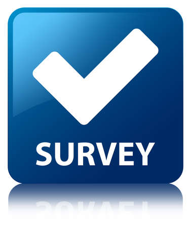 validate: Survey (validate icon) blue square button Stock Photo
