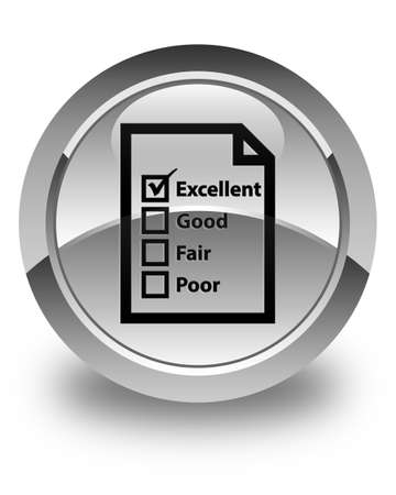 excellent service: Questionnaire icon glossy white round button