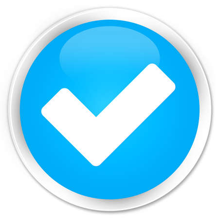 validation: Validate icon cyan blue glossy round button
