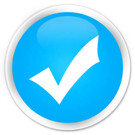 validation: Validation icon cyan blue glossy round button