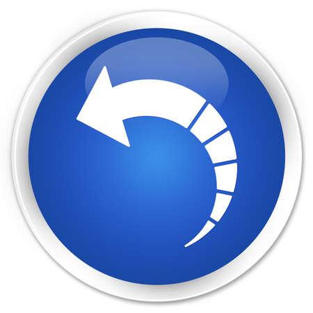 back arrow: Back arrow icon blue glossy round button