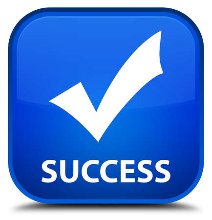 validate: Success (validate icon) blue square button