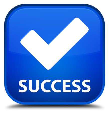 validate: Success (validate icon) blue square button