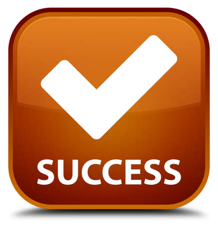 validate: Success (validate icon) brown square button