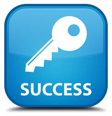 insecure: Success (key icon) cyan blue square button Stock Photo