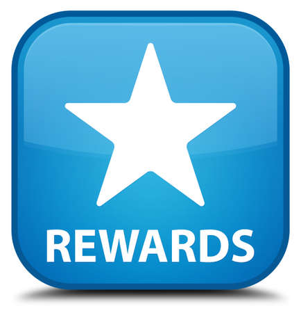 Pivotal Payments ISO Agent Program - Rewards and Promotions