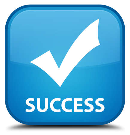 validate: Success (validate icon) cyan blue square button