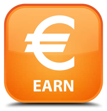 earn: Earn (euro sign) orange square button