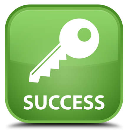 success key: Success (key icon) soft green square button