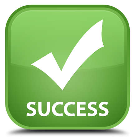 validate: Success (validate icon) soft green square button