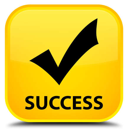 validate: Success (validate icon) yellow square button