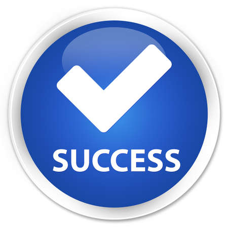 validate: Success (validate icon) blue glossy round button
