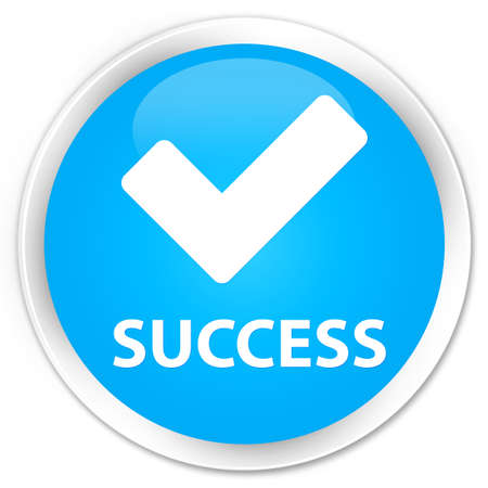 validate: Success (validate icon) cyan blue glossy round button