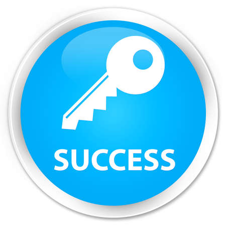 success key: Success (key icon) cyan blue glossy round button