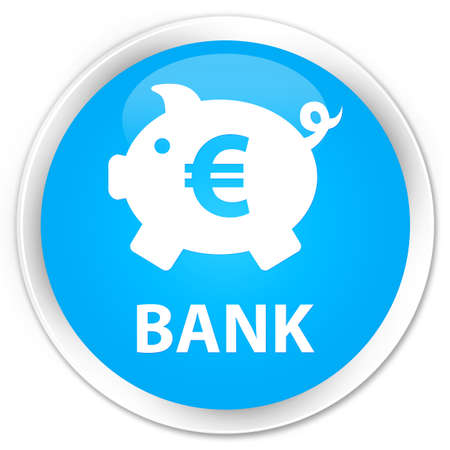 penny: Bank (piggy box euro sign) cyan blue glossy round button Stock Photo