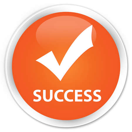 validate: Success (validate icon) orange glossy round button