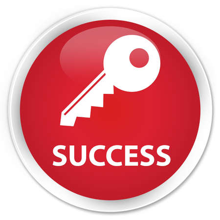 success key: Success (key icon) red glossy round button