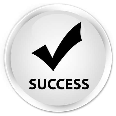 validate: Success (validate icon) white glossy round button Stock Photo