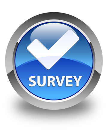 validate: Survey (validate icon) glossy blue round button Stock Photo