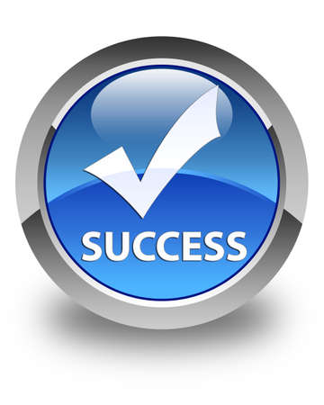 validate: Success (validate icon) glossy blue round button