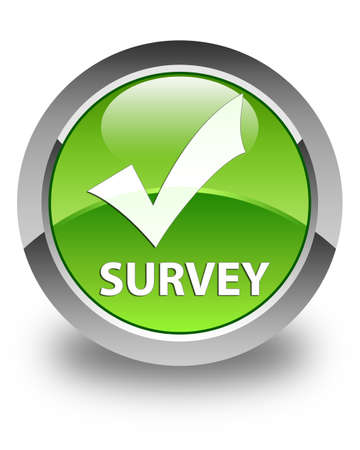 validate: Survey (validate icon) glossy green round button Stock Photo