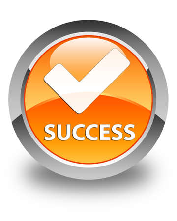 validate: Success (validate icon) glossy orange round button