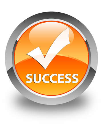 validate: Success (validate icon) glossy orange round button