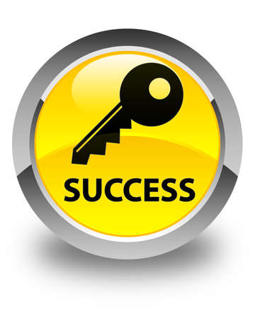 insecure: Success (key icon) glossy yellow round button