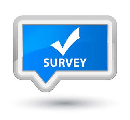 validate: Survey (validate icon) cyan blue banner button