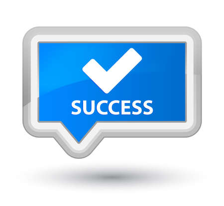 validate: Success (validate icon) cyan blue banner button
