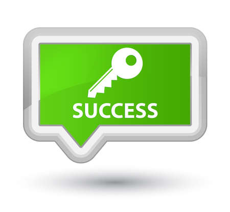 insecure: Success (key icon) soft green banner button