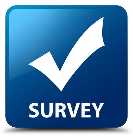 validate: Survey (validate icon) blue square button Stock Photo