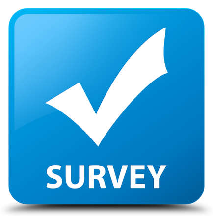 validate: Survey (validate icon) cyan blue square button Stock Photo