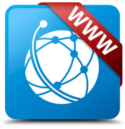 WWW (global network icon) cyan blue square button