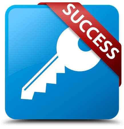 Success (key icon) cyan blue square button Stock Photo