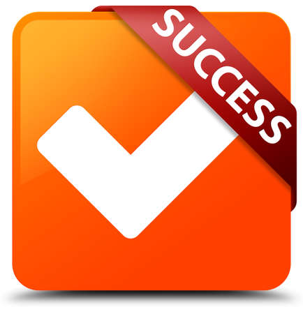 Success (validate icon) orange square button