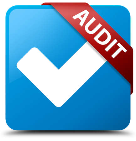 blue button: Audit (validate icon) cyan blue square button Stock Photo