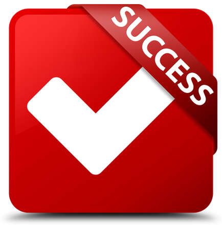 validate: Success (validate icon) red square button