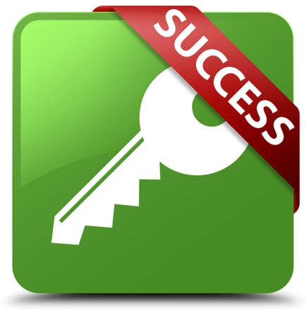 Success (key icon) soft green square button