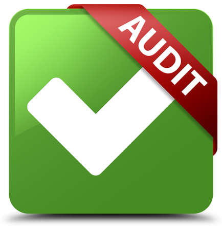 validate: Audit (validate icon) soft green square button Stock Photo