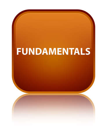 Fundamentals isolated on special brown square button reflected abstract illustration