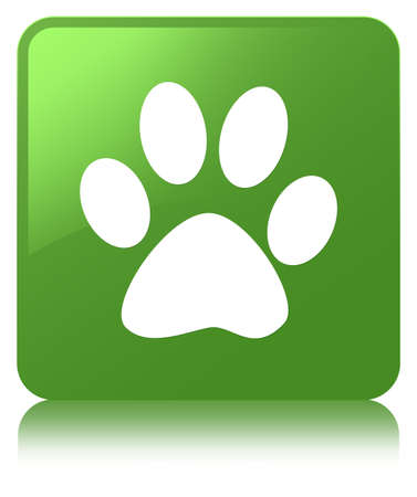 Animal footprint icon isolated on soft green square button reflected abstract illustration
