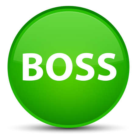 principal: Boss isolated on special green round button abstract illustration