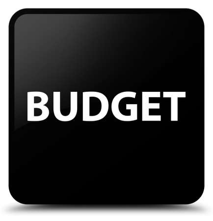 Budget isolated on black square button abstract illustration